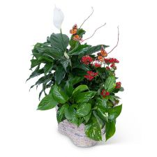 Verdant Basket with Butterflies